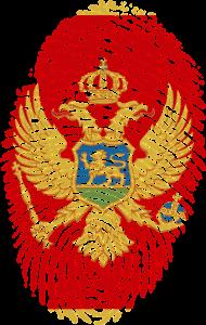 get passport montenegro