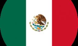 get mexico passport citizenship